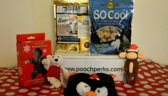 Pet Gifts: What Do You Get a Dog That Has Everything?