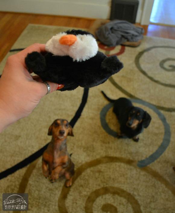 Pooch Perks ZippyPaws Penguin