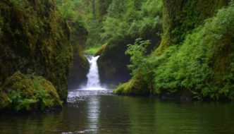 Inspiration Monday: Dog Friendly Bucket-List Hikes, Oregon