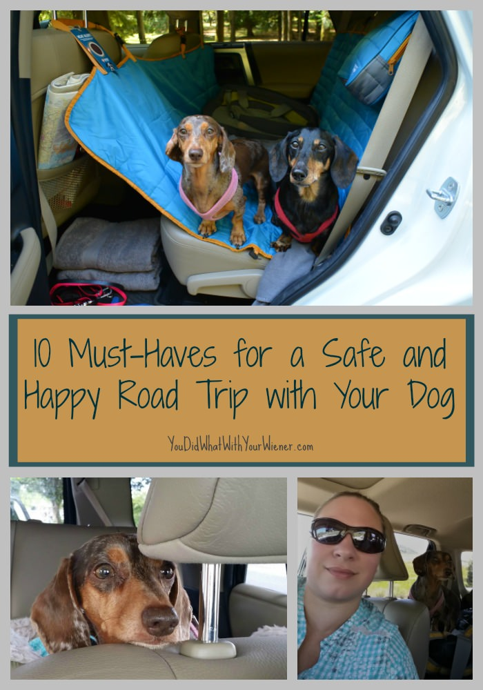 10 Must-Haves for a Safe and Happy Road Trip with Your Dog - advice from someone who has been doing it for 10 years!