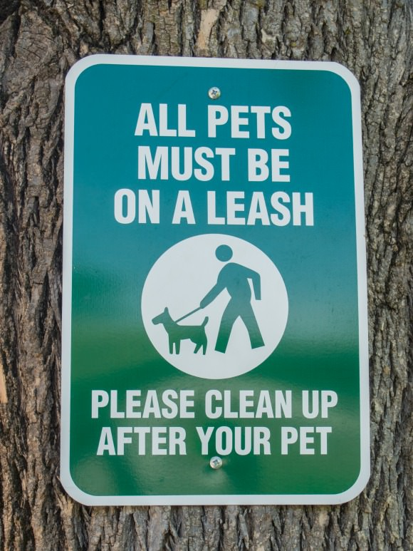 Be a responsible pet owner - leash your dog and scoop the poop