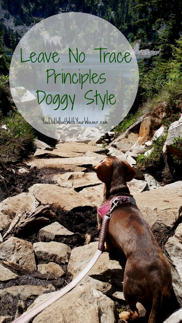 Leave No trace Principles Doggy Style