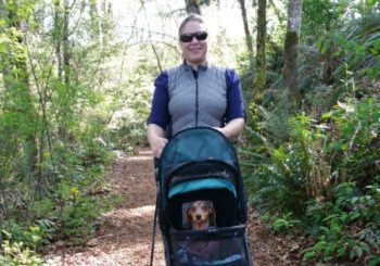 Confessions of An Adventuring Dog Mom
