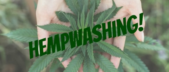 What is Hempwashing? Find Out Here.