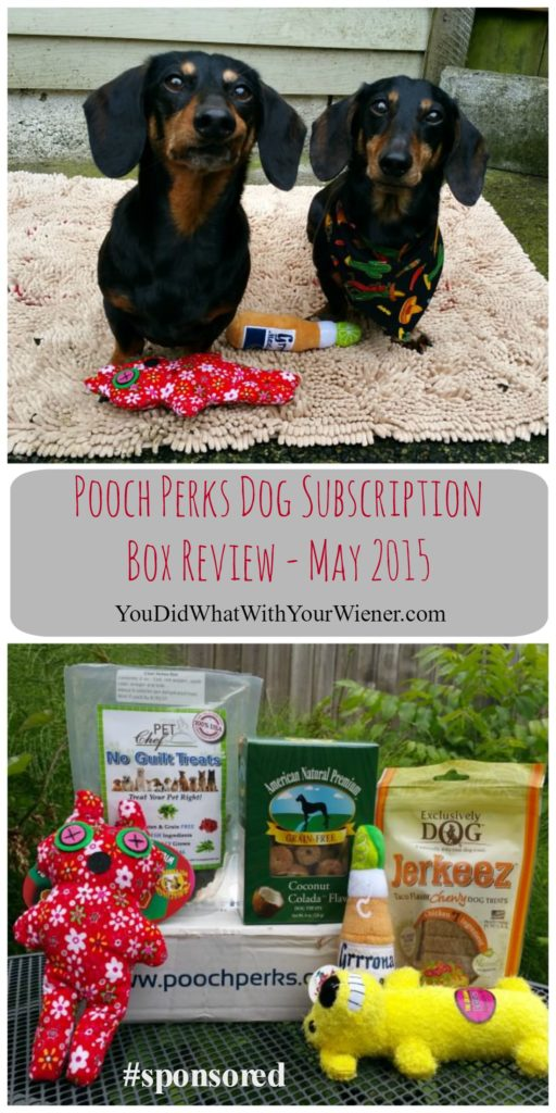 Pooch Perks Dog Subscription Box Unboxing Video Review
