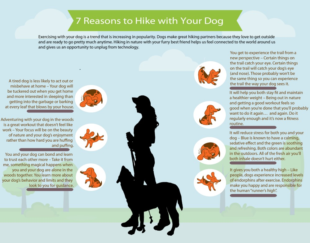 Hiking with your dog has many benefits - We touch on 7 of them in this Infographic