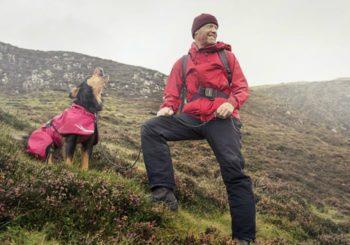 Dog on a mountain wearing a Hurtta Torrent Rain Coat