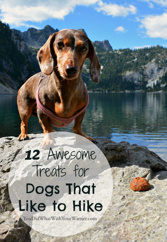 Dogs will love these treas when out on the trail
