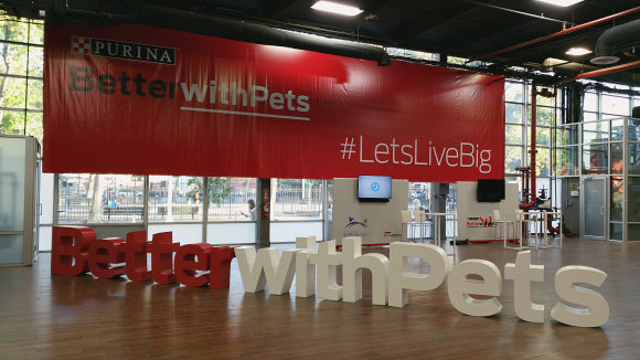 Welcome to the Purina Better with Pets Summit