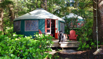 Dog sitting outside of glamping yurt