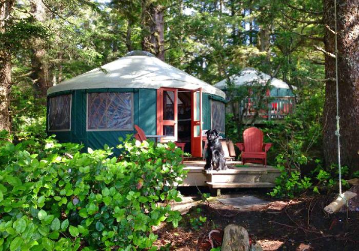 Dog Friendly Glamping Yurts Cabins And Huts In Washington