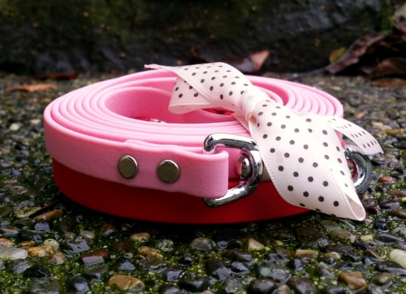Dog Walkies Biothane Leash