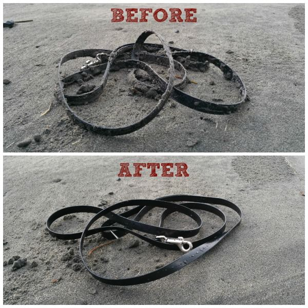 Before and after cleaning a biothane leash