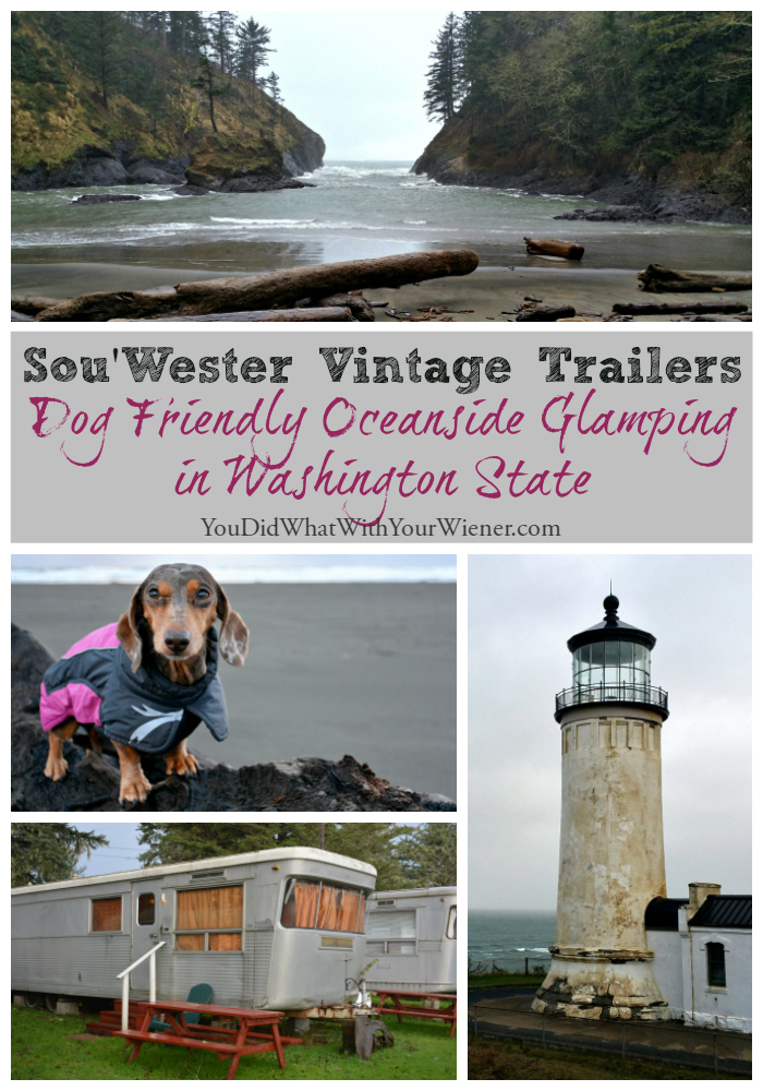 The dog friendly Sou'Wester is a fun place to go glamping with your dog