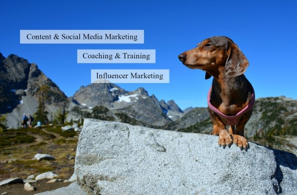 PetTalk Media Social Media Consulting for Pet and Outdoor companies