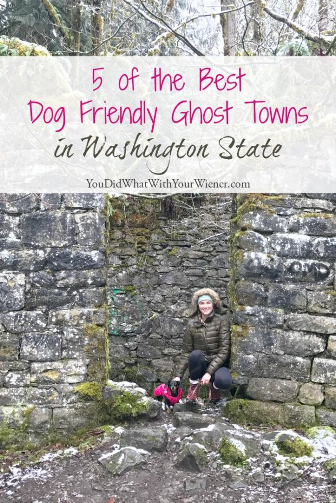 Dog Friendly Ghost Towns Near Seattle
