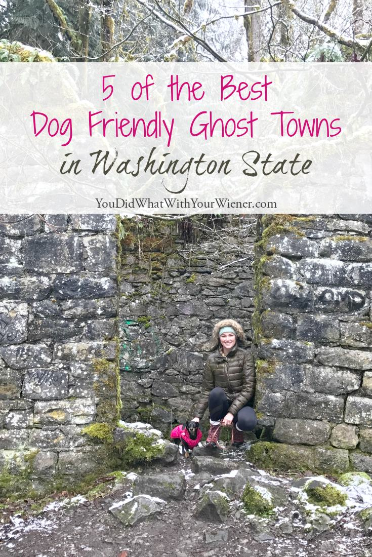 Dog Friendly Ghost Towns Near Seattle