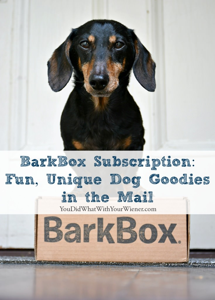 The BarkBox Subscription Box is Full of Surprises For Your Dog