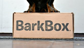 BarkBox Dog Subscription Box Review