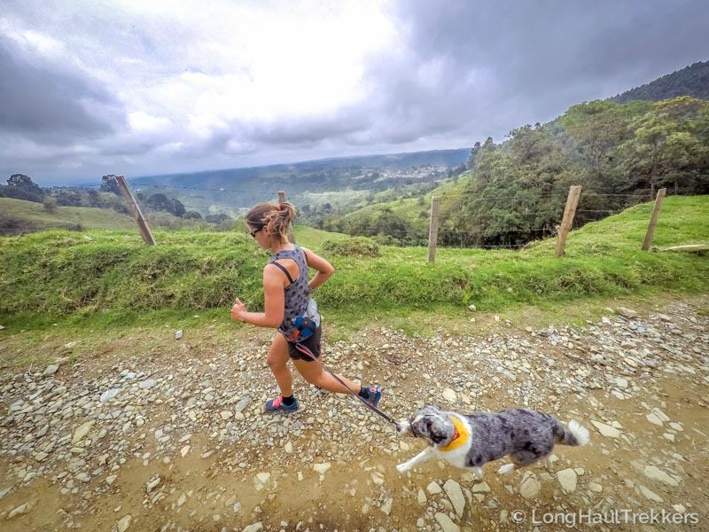 Trail running with a dog - what to do when you encounter off leash dogs