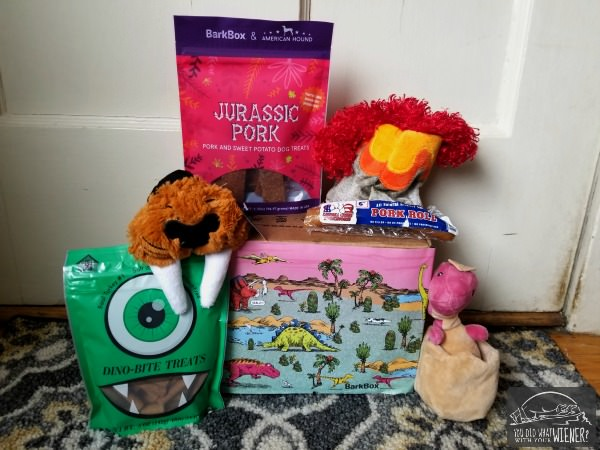 What's Inside the June BarkBox - Dinosaur Theme