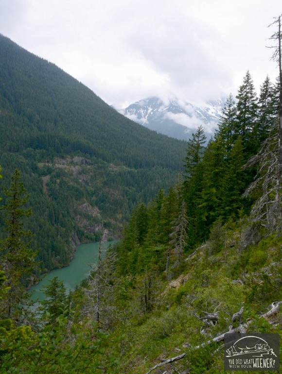 View of Diablo Lake from the trail