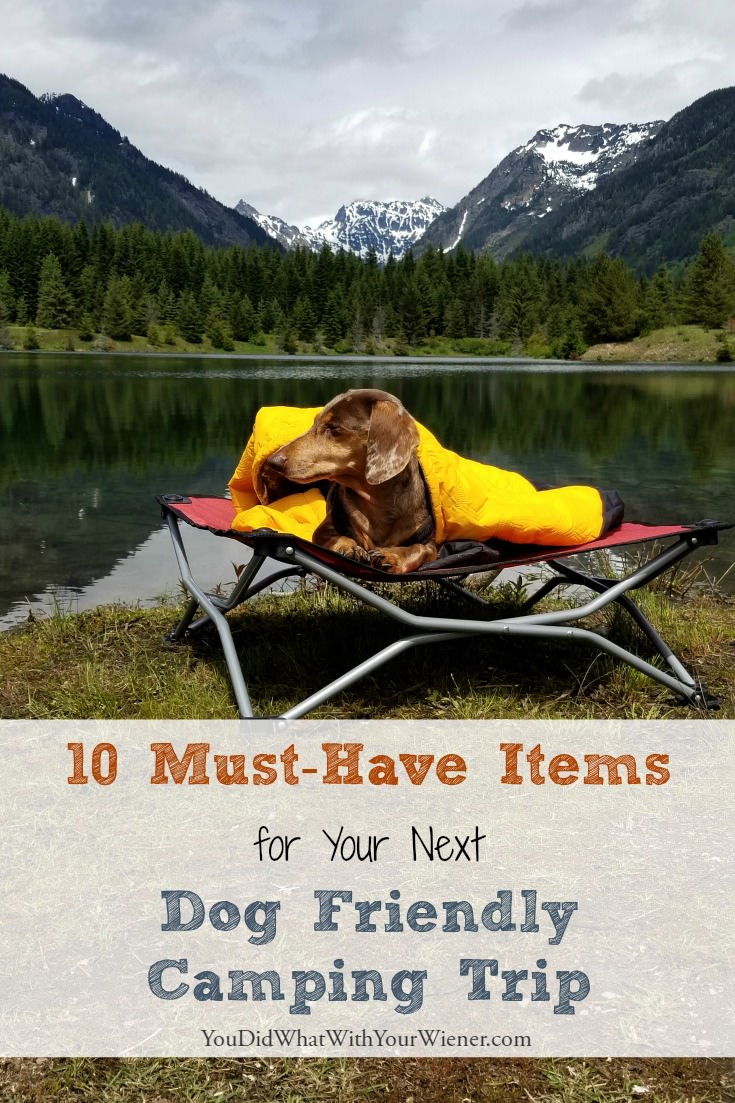 Things to keep your dog safer and happier on a camping trip