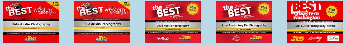 Best of Western Washington - Julie Austin Best Pet Photographer
