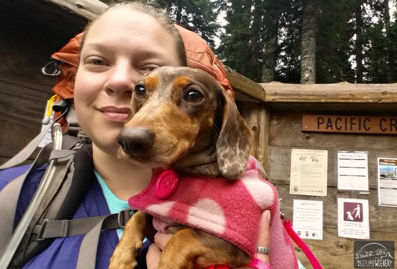 Backing is the best way to camp with your dog