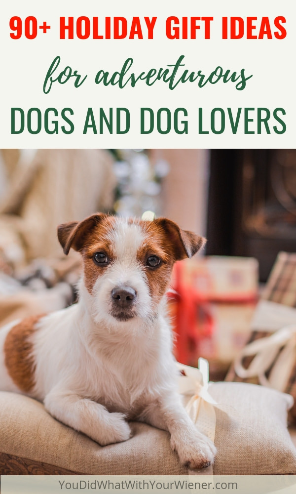 A big list of holiday gifts for dogs and their owners