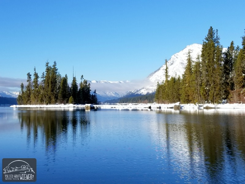 Snowshoe with your dog at lake Wenatchee