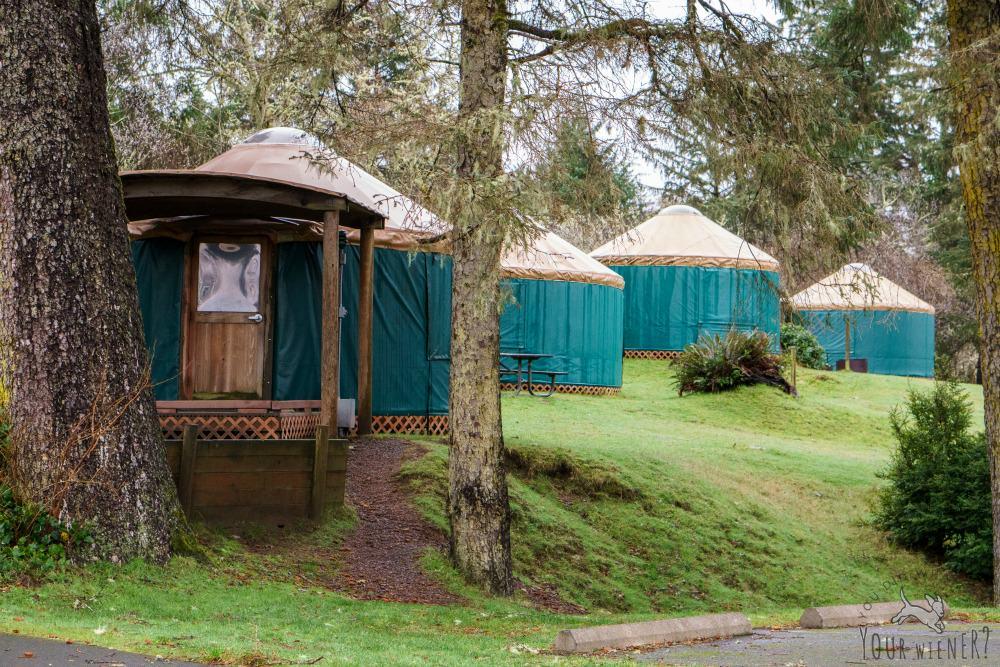 Yurts at Fort Stevens State Park near Astoria