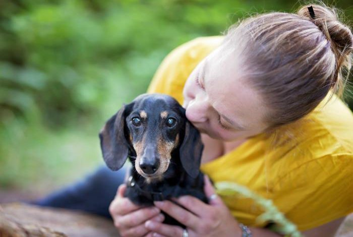 Love and Loss: Letting Go of My Dog With Dementia