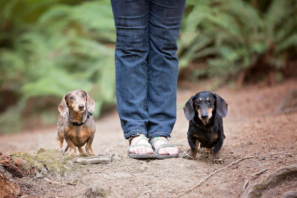 Jessica Standing with Chester and Gretel - Courtesy: Brooke Mallory Photography
