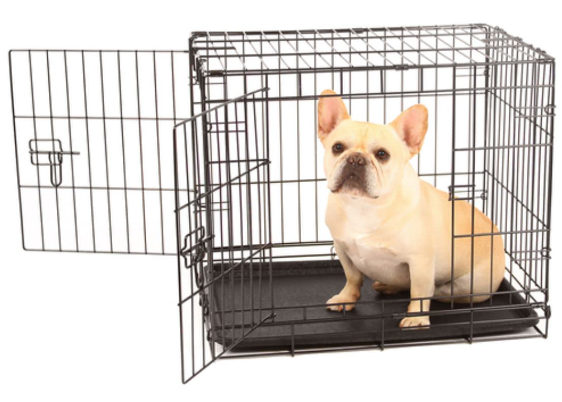 Carlson Pet Small Double Door Dog Crate