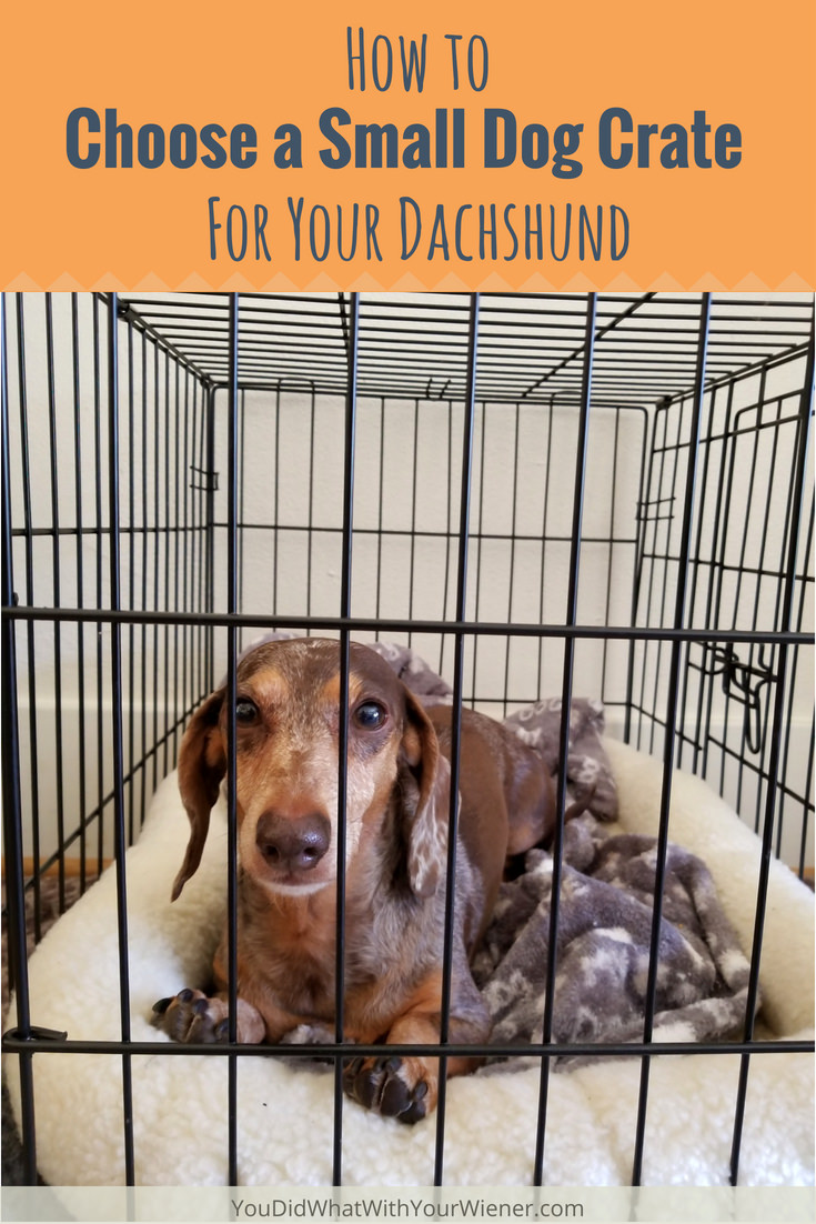 Choosing the right dog crate is key to making sure your dog is confortable