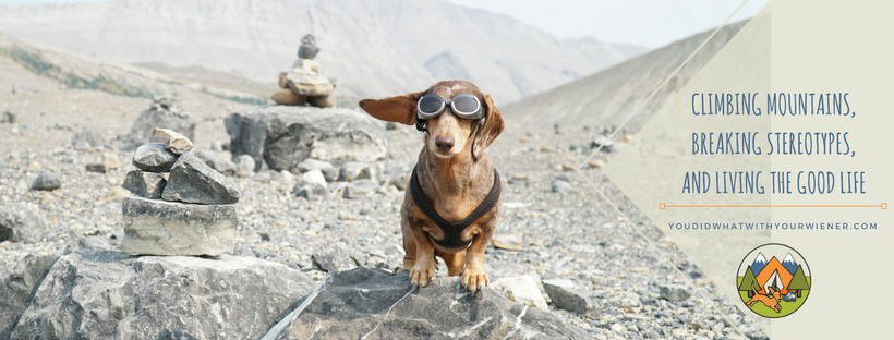 Hiking Dachshund - star of the blog YouDidWhatWithYourWiener.com