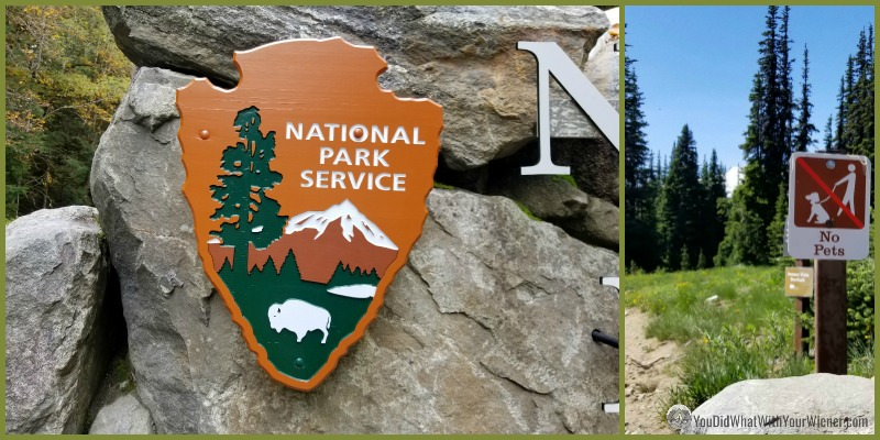 No Dogs on Trails at National Park Sign