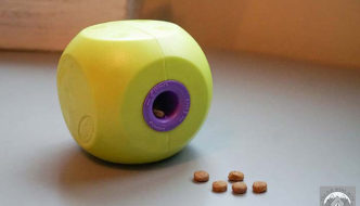 A lime green and purple slow feeder ball toy sits on a counter with dog kibble spilling out.