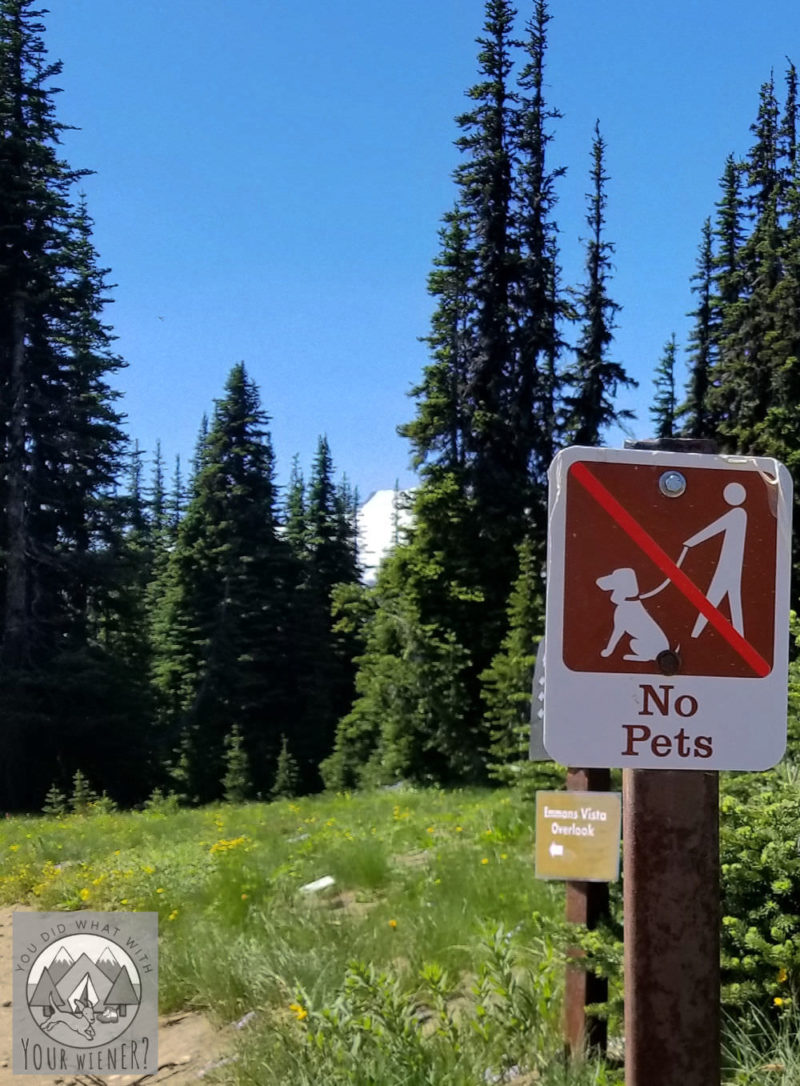 No dogs allowed sign at a National Park