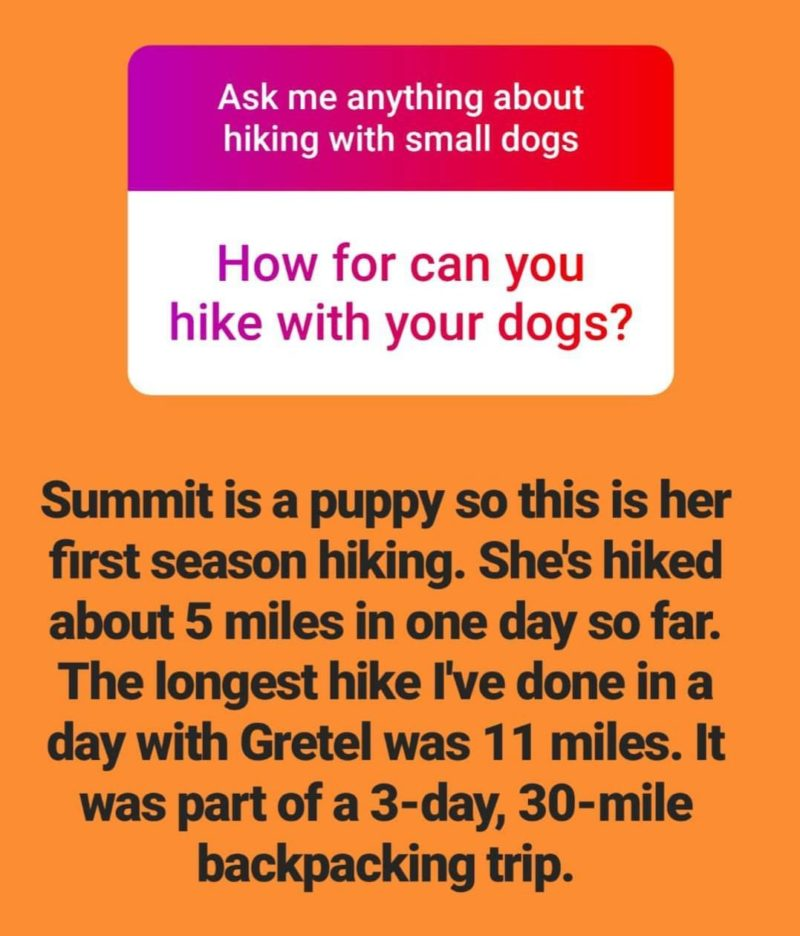 Reader Question: What is the longest distance you're hiked with your small dog?