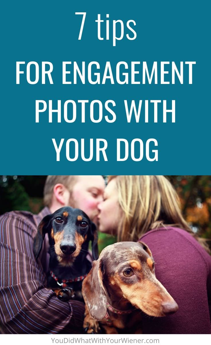7 tips for successful engagement photos with your dog
