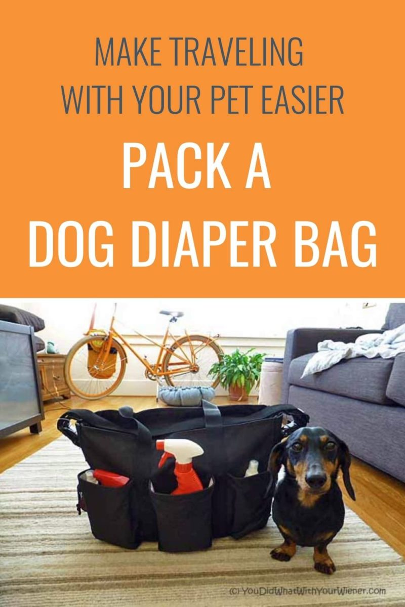 What to pack in a dog diaper bag for travel.
