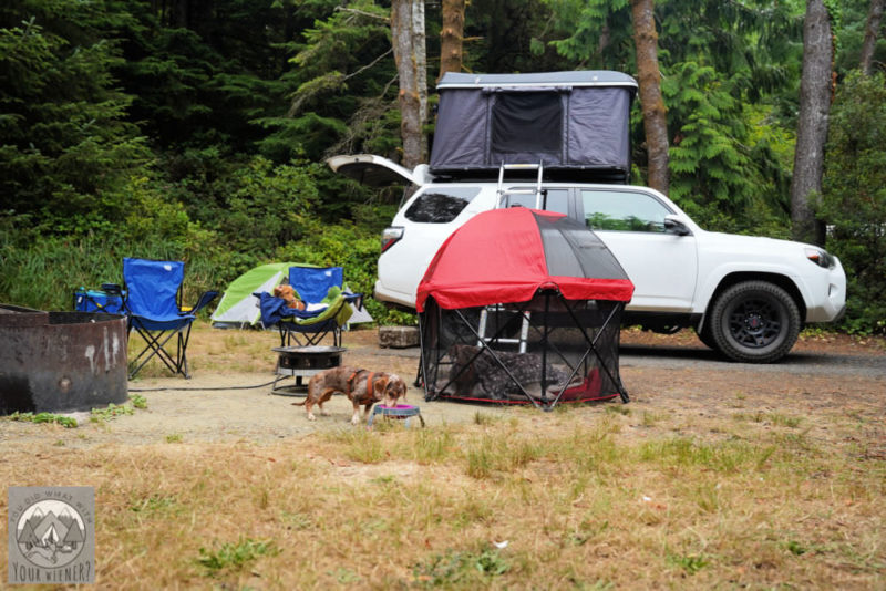 Dog pet pen sitting next to a Toyota 4Runner for size scale